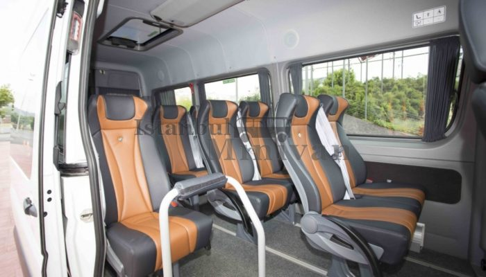 Rental Cars for Disabled Guests with Driver
